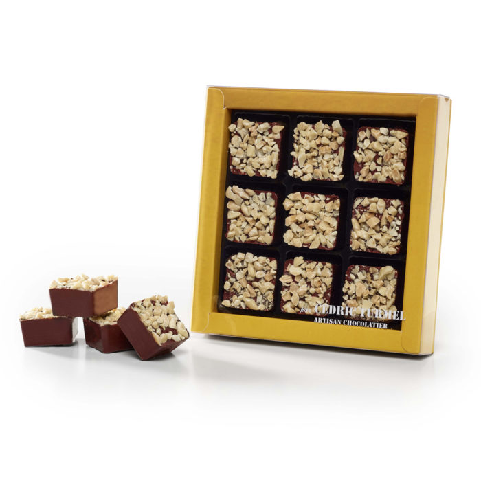 Coffret de 9 pièces de rochers chocolat noir praliné amandes et noisettes - Cédric Turmel artisan chocolatier