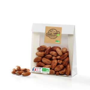 fèves de cacao crues
