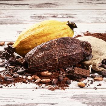 Découvrez les saveurs des plus grands crus de cacao, demandez un devis ou remplissez notre formulaire de contact- Cedric Turmel